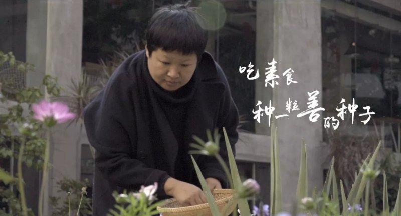 """白海艳:""""种一粒善的种子"""",因为每个人心中都有一片心灵的田野,她希望每个人都在这片田野种上一粒善的种子"""